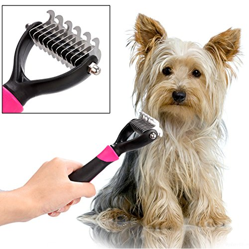 Cheap 4 Pieces Professional Dog Grooming Kit Nail Clipper Slicker