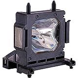 EWO'S LMP-H202 LMP-H201 Replacement Projector Lamp Bulb for Sony VPL-HW30AES HW30ES HW50ES HW55ES VW95ES HW30 HW30ES SXRD HW40ES Projector