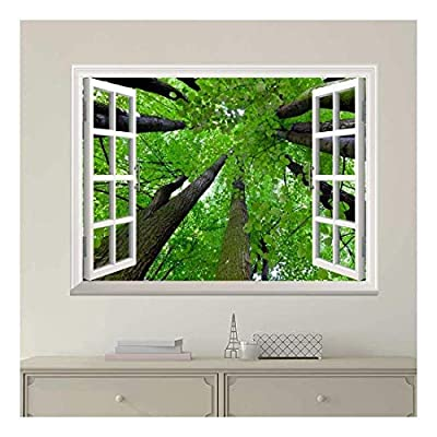White Window Looking Out Into The Top of The Trees Wall Mural, That You Will Love, Grand Print
