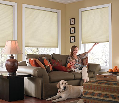 Windowsandgarden Custom Cordless Single Cell Shades, 29W x 52H, Daylight, Any Size 21-72 Wide and 24-72 High ()