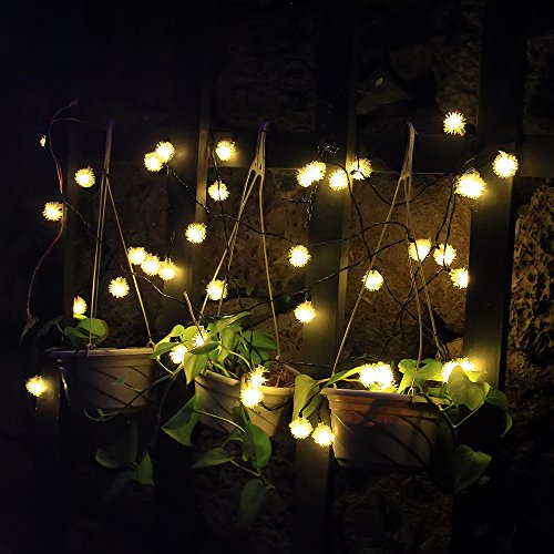 Solar Outdoor String Lights By Innoo Tech: Innoo Tech 20 LED Outdoor String Lights Solar Fairy Lights