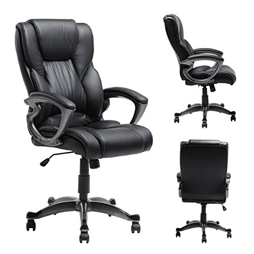 Myka's Ergonomic Leather Executive Office Chair High Back Computer Task Swivel Chair with Upholstered Armrest Black (High Back Upholstered Chair)