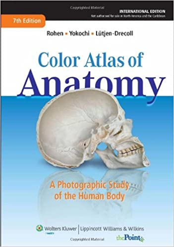 Buy Color Atlas Of Anatomy A Photographic Study Of The Human Body