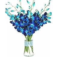 eflowerwholesale - Premium Cut Blue Orchids (10 stems Orchid with Rhinestone Mesh Ribbon Vase)