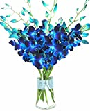 eflowerwholesale - Premium Cut Blue Orchids (10 stems Orchid with Rhinestone Mesh Ribbon Vase)