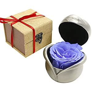 MAYMII Handmade Preserved Flower, Never Withered Roses, Upscale Immortal Flowers, Fresh Roses, Eternal Life Flowers for Love Ones, Gift for Valentine's Day, Anniversary, Wedding (Purple Rose) 28