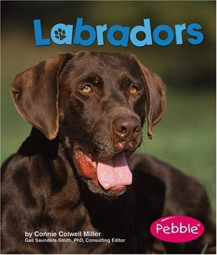 By Connie Colwell Miller Labradors (Dogs) [Library Binding] ebook