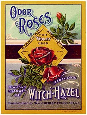 Ecool - Placa de Metal para Pared con diseño de Rosas de Olor para Inodoro de baño con jabón perfumado, Estilo Vintage: Amazon.es: Hogar