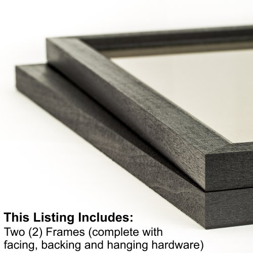 Craig Frames 7171610BK 16 by 20-Inch Picture Frame 2-Piece Set, Solid Wood, .84-Inch Wide, Black (16 X 18 Wood)