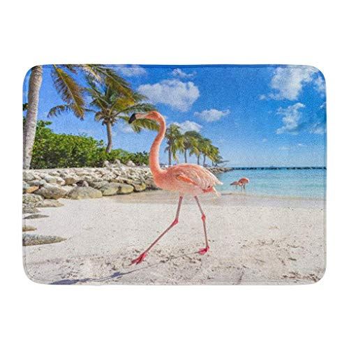 YGUII Doormats Bath Rugs Outdoor/Indoor Door Mat Pink Caribbean Three Flamingos Beach Aruba Island Blue Exotic Animal Bathroom Decor Rug Bath Mat 16X23.6in (40x60cm) Aruba Blue Area Rug