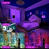 HWay 100W LED Black Lights Flood Light with