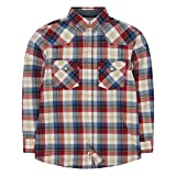 Levi's Boys' Toddler Plaid Western Shirt, Chili Pepper, 3T