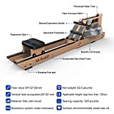 Mr Rudolf Oak Water Rowing Machine with Monitor