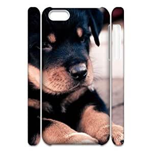 T-TGL(RQ) Iphone 5C 3D Phone Case Dog with Hard Shell Protection