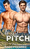 Wild Pitch: A Gay Romance (Stone's Throw Book 1)