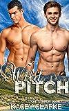 Wild Pitch: A Gay Romance (Stone's Throw Book 1)