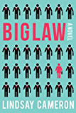 BIGLAW: A Novel