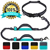 Benicci Hands Free Waist Dog Leash – Strong, Durable & Safe – For Jogging, Walking & Hiking - For Medium and Large Dogs & Multiple Dog Owners – With FREE ID Tag – Adjustable Waist with 5 Color Options