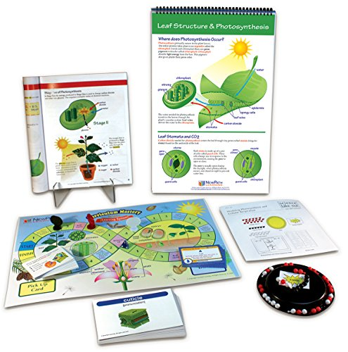- NewPath Learning 74-6726 Photosynthesis and Cellular Respiration Curriculum Learning Module