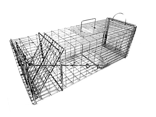 Tomahawk Model 6010 - Raccoon, Woodchuck / Groundhog Trap with One Trap (Access Rear Doors)