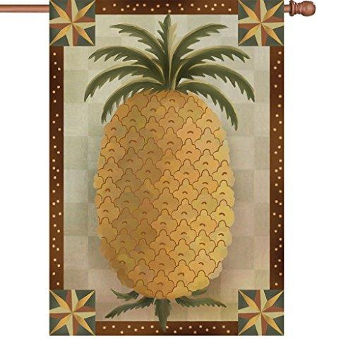 Cheap Premier 52247 House Brilliance Flag, Primitive Pineapple, 28 by 40-Inch