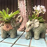 Elephant Planter Pot Succulent Flower Gifts Home