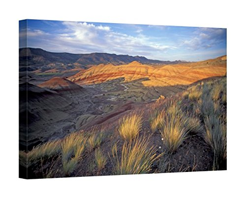 Easy Art Prints Brent Bergherm's 'John Day Fossil Beds Nm' Premium Canvas Art 20 X 30