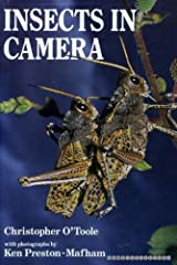 Insects in Camera Hardcover