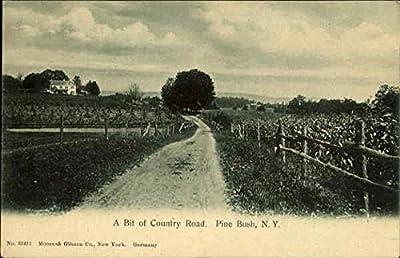 A Bit Of Country Road Pine Bush, New York Original Vintage Postcard