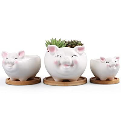 Cartoon Animal Pig Flower Pot Succulent Planter White Ceramic Planter Flower Pots Indoor and Outdoor Set of 3 : Garden & Outdoor