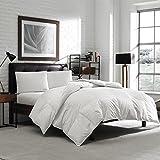 Luxury Eddie Bauer Hypoallergenic 650 Fill Power Lofty Down Comforter - 300 TC Damask Striped Cotton - Medium Warmth (Oversized King 106