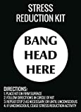 Stress Reduction Kit Bang Head Here Wall Hanging Print Funny Directions Sign