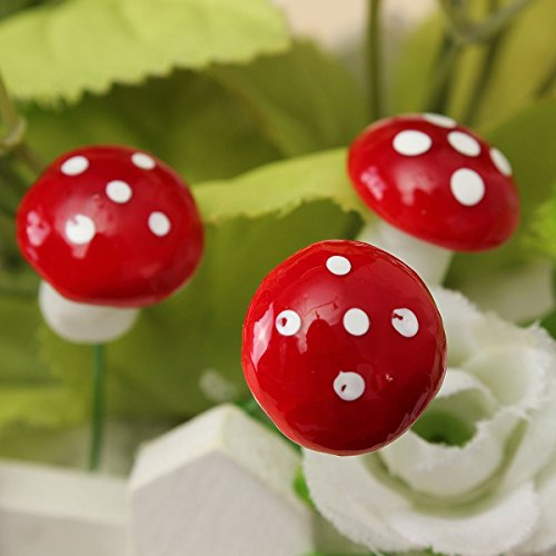 red mushrooms - 6
