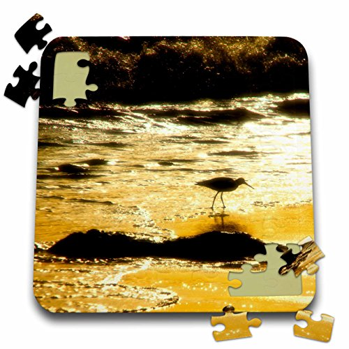 Game Birds Boehm (3dRose Boehm Photography Bird - Long Billed Curlew Wading Bird in profile on a Beach - 10x10 Inch Puzzle (pzl_282338_2))