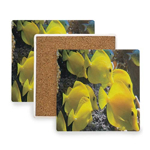 Large Square Drink Coasters,Yellow Tang Ocean Fish Ceramic Thirsty Stone With Cork Back Cup mats Protect Your Furniture From Spills, Scratches,Water Rings and Damage 2pcs