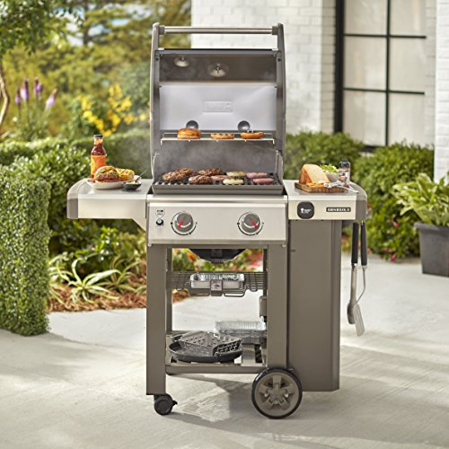 Weber-Stephen Products 65010001 Genesis Ii E210 Ng Grill, Two-Burner Black | Gas Barbeque Reviews