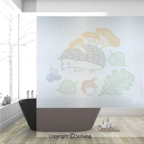 - 3D Decorative Privacy Window Films,Colorful Hedgehog with Various Edible Items Mushrooms Nuts and Leaves Animal Diet,No-Glue Self Static Cling Glass film for Home Bedroom Bathroom Kitchen Office 36x36