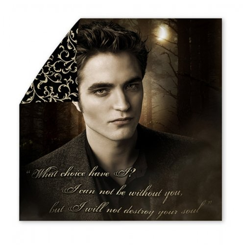 twilight saga merchandise edward - 4
