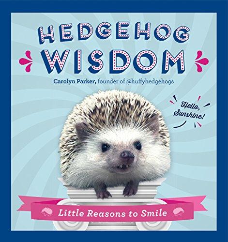 Hedgehog Wisdom: Little Reasons to Smile