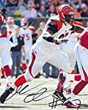 Geno Atkins Cincinnati Bengals signed autographed, 8X10 Photo, COA with the Proof Photo of Geno Signing Will Be Included