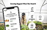 Lettuce Grow 18-Plant Farmstand