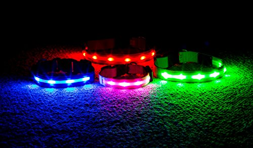Wagz4life - Safety LED Dog Collar - Rechargeable - Water Resistant - Light Up or Flashing - Highest Quality - High Visibility - Looks Awesome - Includes USB Charger (XXL, (Chain Plaid Cover)