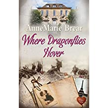 Where Dragonflies Hover (Choc Lit): When a stranger's life is more intriguing than your own ...