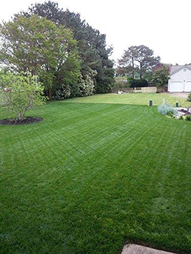 Natural Alternative Fall Lawn Fertilizer 21 0 4 Enriched