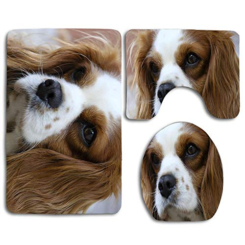 EnmindonglJHO Cavalier King Charles Bathroom Rug Mats Set 3 Piece Toilet Carpet Rugs Includes Contour Mat and Lid Cover, Non Slip Mats for Tub Shower
