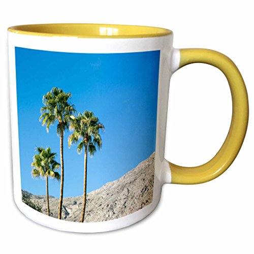 3dRose Danita Delimont - Desert - Scenic of palm trees, Palm Springs, California, USA. - 11oz Two-Tone Yellow Mug - California Palm Outlet Spring