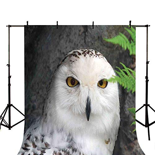(Wizard Stylish Backdrop,Pattern White Owl Themed Animal Green Leaves Amber Eyes Gift Witchcraft Print for Photography,98.4