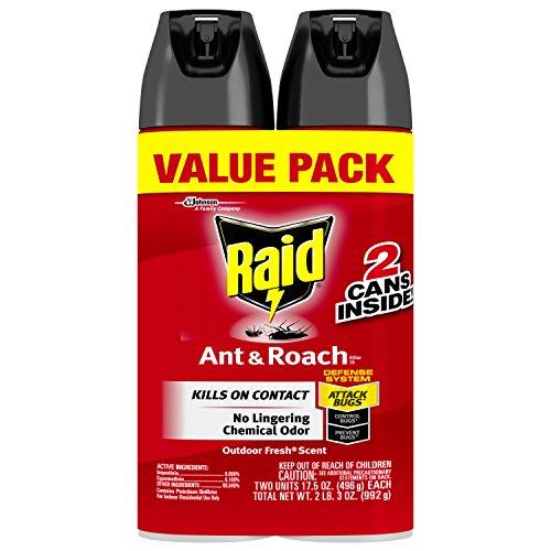 raid-ant-roach-killer-outdoor-fresh-scent