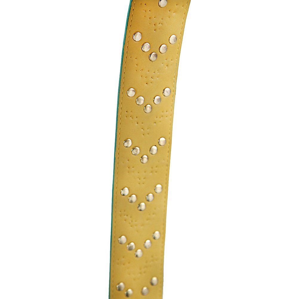 Nicole Lee Haydee Guitar Embellished Bag Strap SHD11979