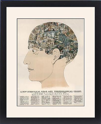 Framed Print Of Phrenological Head by Prints Prints Prints
